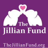 SOE Supports The Jillian Fund